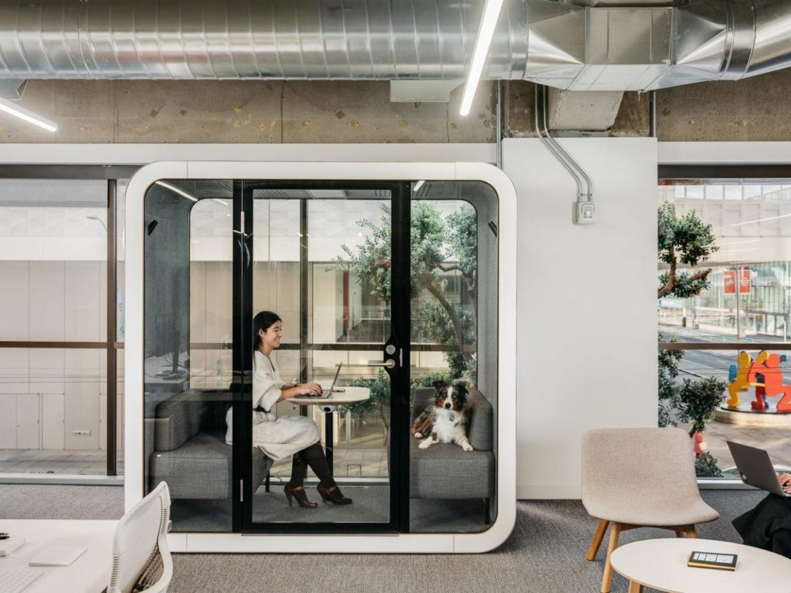 A woman and dog sit in a white Framery Q inside an office while another woman works on a laptop in a chair next to it.