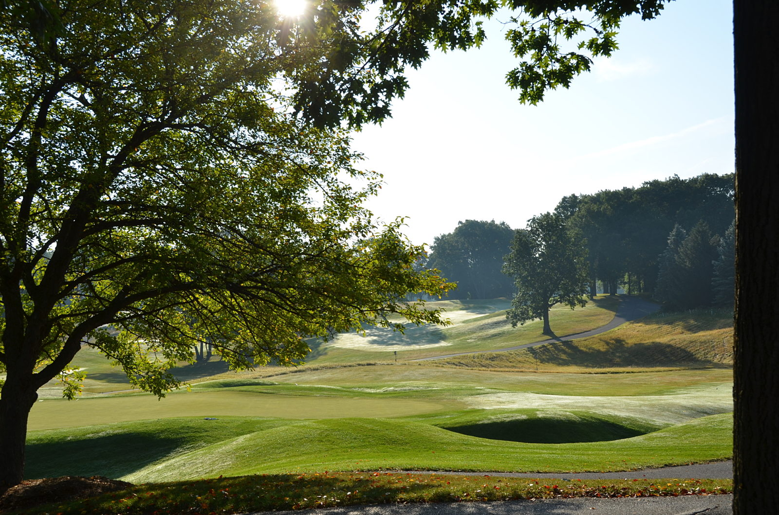 A tree-filled golf course with rolling green hills and sand traps.